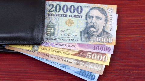 Hungarian money in the black wallet on a wooden background